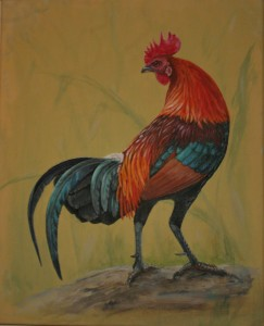 Jungle Fowl - from the original painting by Jennifer Kremmer (used with kind permission)